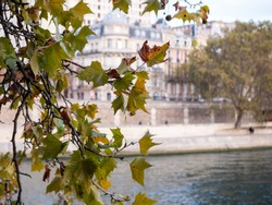 View on the banks of the Seine in Paris, France. Leaves are in the foreground.