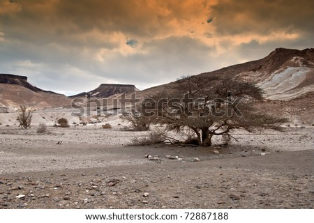 View on the Negev desert in southern Israel