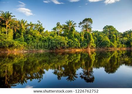 View on the Suriname river in Upper Suriname, Awarradam jungle camp #1226762752