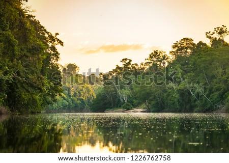 View on the Suriname river in Upper Suriname, Awarradam jungle camp #1226762758