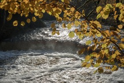 View on the  the natural small waterfall in Lahema NP, Estonia, framed with the tree branch with the autumn colored leaves