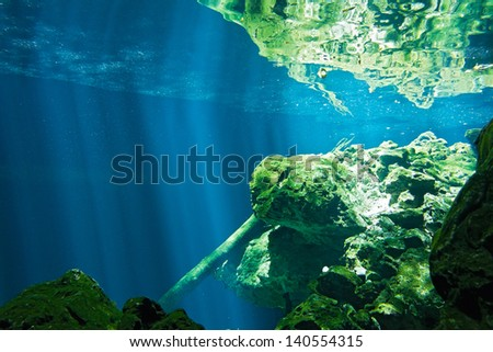 View on the underwater rocks - cenote