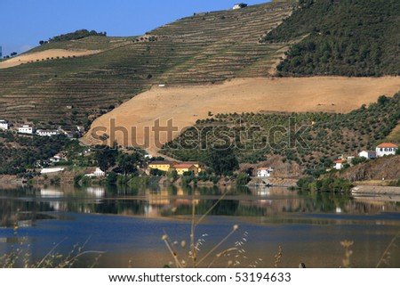 view on vineyard and houses in valley Douro