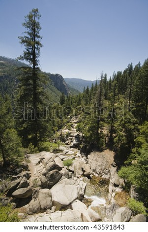 View over a creek in Yosemite National Park