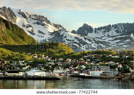 View over a Norwegian fjord with a small port and mountains
