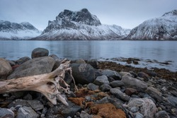 View over Bergsfjord in Winter with snowcapped mountain Finnkona in background and grey rocks, stones and old treetrunk in foreground on cloudy evening, Bergsbotn, Senja, Norway