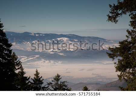 view over Carpathian Mountains in wintertime #571755184