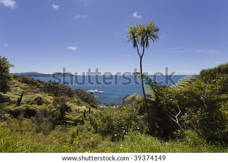 View over Pacific Ocean, North Island, New Zealand