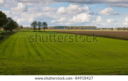 View over the colorful fields near the Dutch village of Drimmelen, North-Brabant