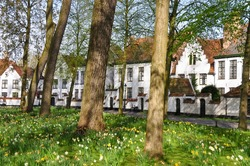 View over the gardens with tulips towards the historic buildings of the Princely Beguinage Ten Wijngaerde (Begijnhof Brugge) in Brugge, Belgium