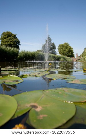 View over the water level with waterlillies and the tower of Emmeloord in the back.