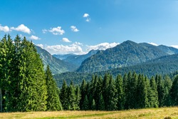 View over valley in the mountains, meadow and conifer forest in the foreground, mountains in the background, blue sky with some clouds