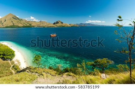 Shutterstock View over white sand beach and coral bay at Komodo, Flores Indonesia. Grass in the foreground and mountains in the background.