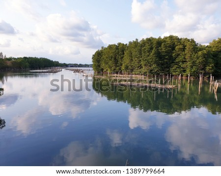 View sea scape and sky scape  of mangrove fishery at Prasae estuary, Rayong, Thailand #1389799664