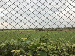 view sky and meadow Look through steel mesh, Iron bars on the street, View inside the cage mesh barrier.