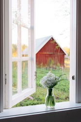 View through an old wooden white window, open window, bouquet of wild garlic in a vase and an old red wooden barn in the background, country life in Sweden
