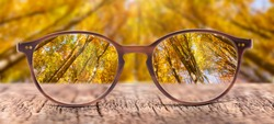 View through eyeglasses to nature