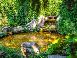 View through foliage over waterfall fountain amidst crawling greenery with water flowing into round-shaped pond with beautiful play of light and shade in Alexandria Park, Bila Tserkva.