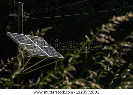 View through tall grass of a solar panel on a wood utility pole with power lines, sunny day with bright sun on the panels and deep shade in the woods  #1123592801