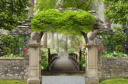 View through the arch to the sunny summer forest