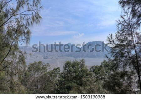 View through the trees and mountain vegetation of the crater of the active volcano Bromo and the photogenic Mount Batok in close proximity. Blue sky with gentle clouds, sunny day. Against background #1503190988