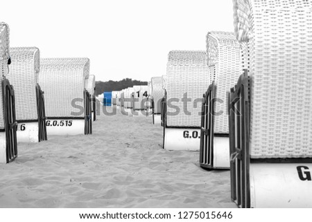 View through two rows of white wicker beach chairs in the sand at the Baltic Sea. In the background you can see a single blue beach chair. A pic in black white coloured art