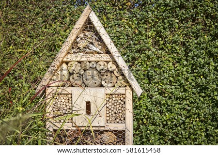 View to an insect house in the garden, protection for insects, named insect hotel, Insektenhotel. #581615458