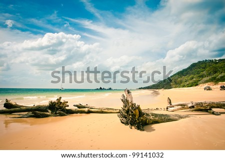 View to beach in beautiful sunny weather, Moreton Island, Australia