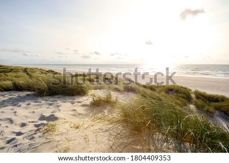 View to beautiful landscape with beach and sand dunes near Henne Strand, North sea coast landscape Jutland Denmark Сток-фото ©