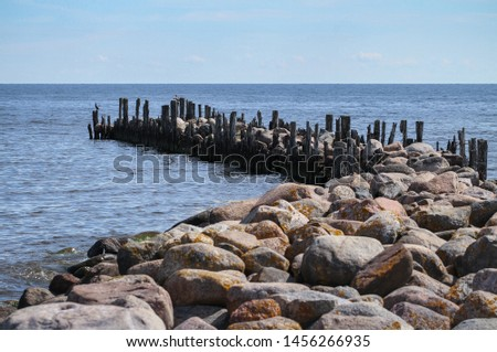View to breakwater with birds. #1456266935