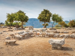 view to ruins on the square and olive trees in summer day