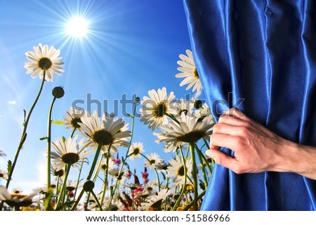 view to summer flowers behind a blue curtain showing happiness