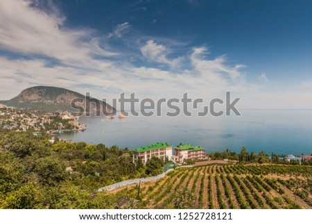 View to the Happy Hotey hotel and Ayu-Dag mountain from the vineyard. Gurzuf, Crimea.