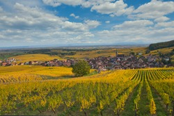 view to the little village of Blienschwiller in Alsace in France