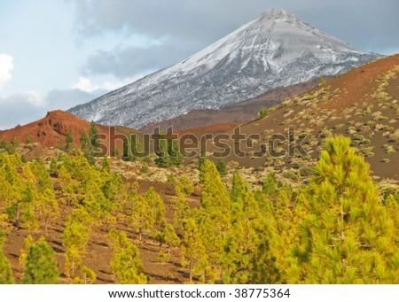 view to the Mount Teide - Teide N.P. (Tenerife - Canary Islands) 03
