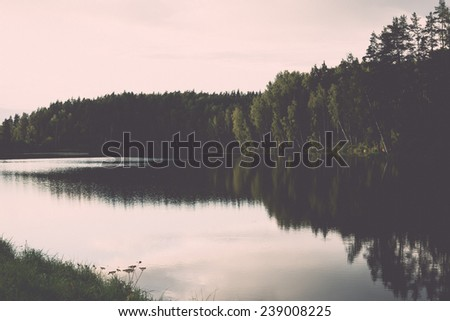 view to the mountain river in summer surrounded by forest and sandstone cliffs - vintage retro film look Stok fotoğraf ©