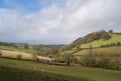 View towards Lower Lye, Herefordshire, England.