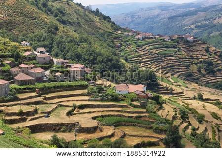 Viewpoint of the Terraces overlooking the Agricultural terraces (famous Tibet style landscape view), Sistelo, Arcos de Valdevez, Portugal. Foto d'archivio ©