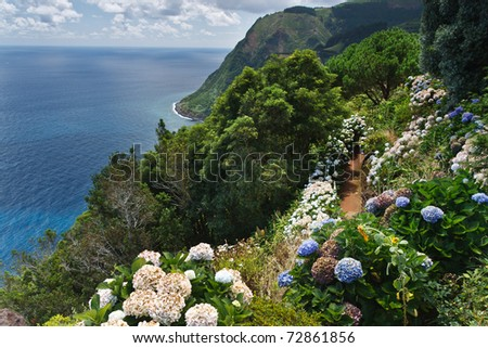 Viewpoint Ponta da Madrugada with huge amount of blooming hydrangeas in Sao Miguel Azores island