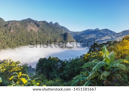 "Viewpoint sea of mist Fang, Chiang Mai, Thailand. ""Sui Thang Viewpoint"" #1451581667"