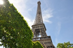 Views from Underneath the Eiffel Tower on a Parisian Summer Afternoon Picnic