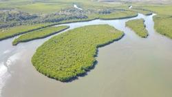 Views of new caledonia / River estuary / Port Laguerre
