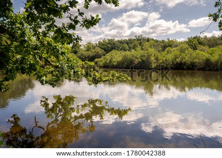 Views of the Ornithological Reserve of Teich, next to the Arcachon Bay, in the Gironde Department, France Stock photo ©