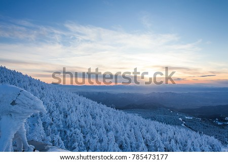 Views of the snow monster and mountains landscape at Zao onsen with sunset in winter, Japan #785473177