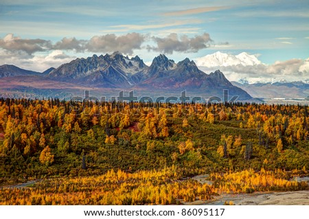 Views to Mount Mckinley and Denali National Park in Autumn Alaska North America