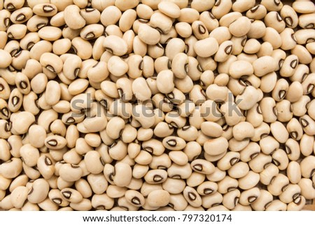 Vigna unguiculata is scientific name of Black Eyed Pea legume. Also known as Goat Pea, California Blackeye and Feijao Fradinho. Closeup of grains, background use.