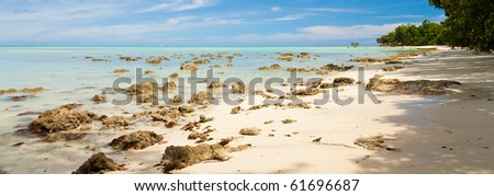 Vijaynagar beach on Havelock Island, Andaman and Nicobar Islands, India.