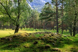 Viking burial mound at the largest Iron Age site in western Norway, in a remote wood, on a sunny day, above the Norwegian fjord village of Eidfjord in Hordaland