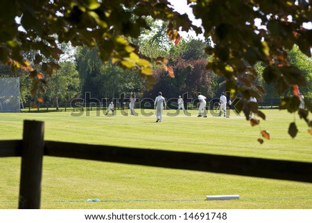 village green cricket match