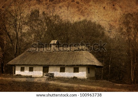 Village house in forest environment, artistic toned image